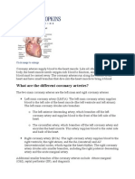 Anatomy of Coronary Artery