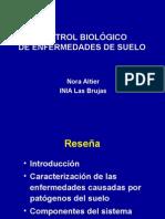 Control biologico en enfermedades de suelo