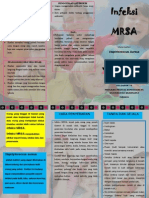LEAFLET MRSA.pdf