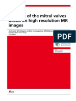 Analysis of the Mitral Valves Based on High Resolution MR Images