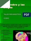 Cerebro y Drogas 2