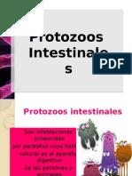 Protozoos intestinales