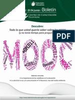 Definicion de los Cursos MOOC