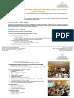 DIPLOMADO SSMA.pdf