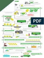 PIONEER Infografia WEB 23 012 14 FGGGGGGGG- Copia