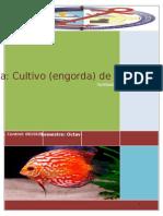 Práctica- Cultivo (engorda) de Ostión