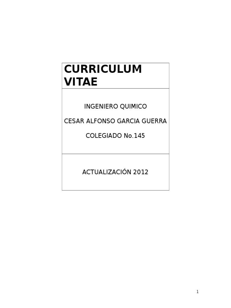Curriculum Vitae Ing. Garcia