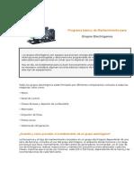 Programa Básico de Mantenimiento -GRUPO ELECTROGENO