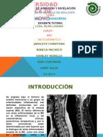proyecto-de-aula-biologia-MT (1).pptx