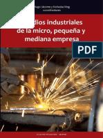 ESTUDIOS_INDUSTRIALES_MIPYMES.pdf
