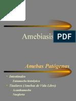 Amebiasis, tipos y caracteristicas.