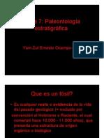 Paleontología Estratigrafica