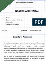 Clase No 9, Inventario Ambiental