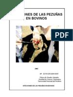 AFECCIONES PODALES EN BOVINOS RIOS