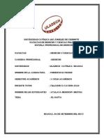 Comercio exterior  trabajo de bertha .pdf
