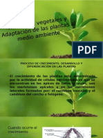 Hormonas-vegetales-mañana (1).pptx
