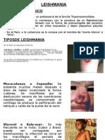 Expo de Leishmania