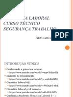 2 - Ginastica Laboral Introducao Simples 20-05-2015