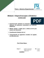 René - Relatório final.docx
