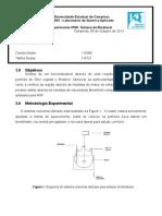 Relatório 6 - QF053 - Biodiesel