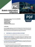 Boletn Informativo de INFOJUNTOS No.6