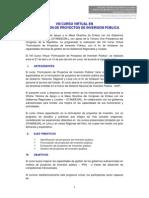 VIII Curso Virtual en PIP - Silabo