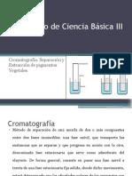 Laboratorio de Ciencia Básica III Cromatografia Grupo 2