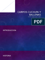 Campos cuchupa y ballenas.pptx