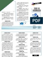 TRIPTICO PNL.pdf