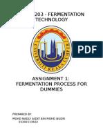 fermentation for dummies