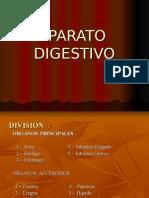 APARATO  DIGESTIVOo2
