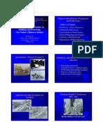 handout Myint Lwin 6pp 1-25-10.pdf