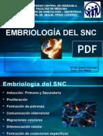 2014-Embriología Del SNC-Dr David Truzman