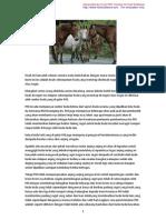 Kisah Kuda