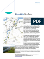 River Foyle River Resource