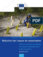 reduction des catastrophes.pdf