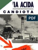 Lluvia Acida - Candiota Analisis Global y Acciones Politicas