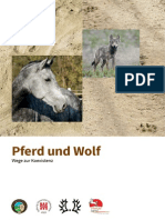 Pferd Und Wolf_Wege Zur Koexistenz