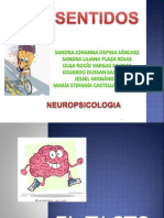 Los Sentidos - Neuropsicologia Shany Ok