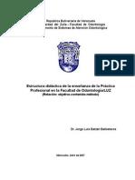 Didactica Practica Profesional