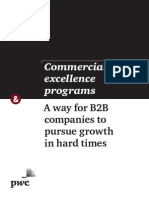 Strategyand Commercial Excellence Programs