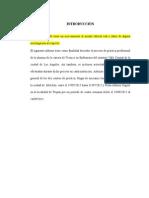 informe de practica PROFESIONAL.docx