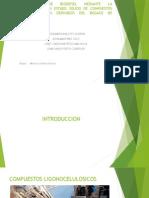 Produccion de Biodiesel Mediante La Fermentacion en Estado (2)