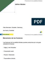 Fx Platillo Tibial