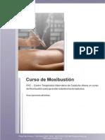 Moxibustion 15 16 PDF