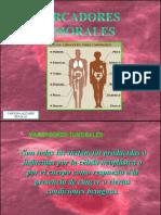 Marcador Tumoral Exp Inmunoii
