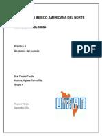 PRACTICA 34 - ANALISIS DE RIESGOS  EN LAS TECNOLOGIAS DE LA INFORMACION
