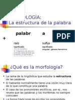 La Morfología - 2013