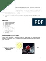 Guia de trabajos practicos Mineralogia.docx