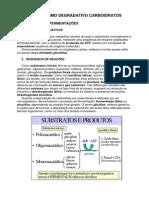 Glicolise Respiracao e via Pentoses Fosfato